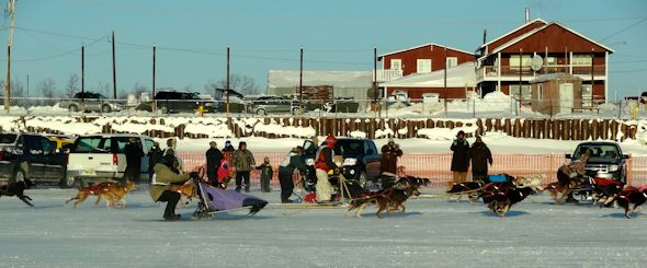 Akiak sled races